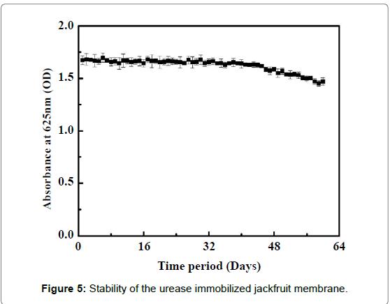 biosensors-bioelectronics-stability-urease