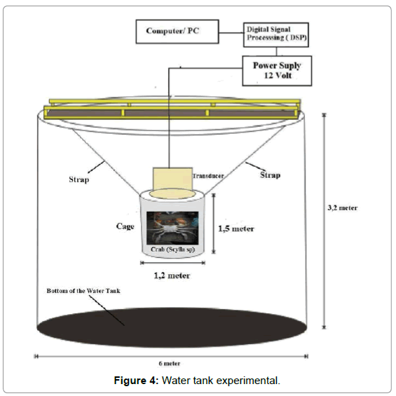 biosensors-bioelectronics-water-tank-experimental