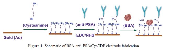 biosensors-journal-Schematic-anti-electrode-fabrication