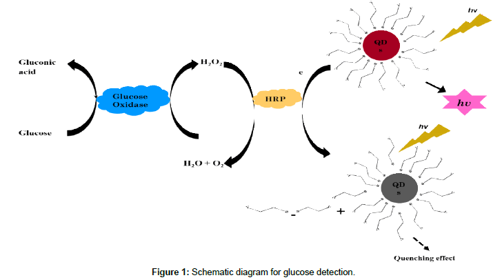 biosensors-journal-Schematic-diagram