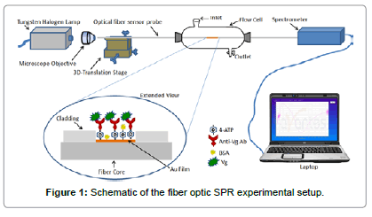 biosensors-journal-Schematic-fiber-optic-experimental