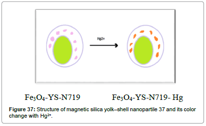 biosensors-journal-Structure-magnetic-yolk–shell