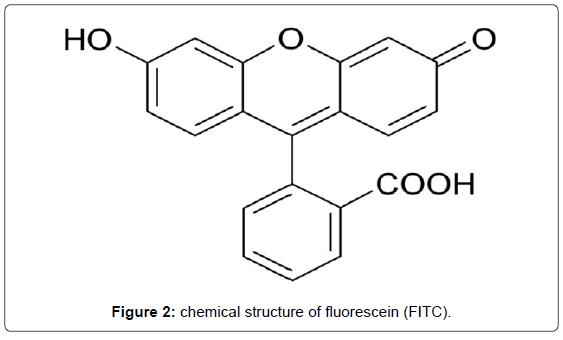 biosensors-journal-chemical-structure-fluorescein