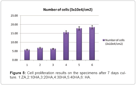 biotechnology-biomaterials-Cell-proliferation
