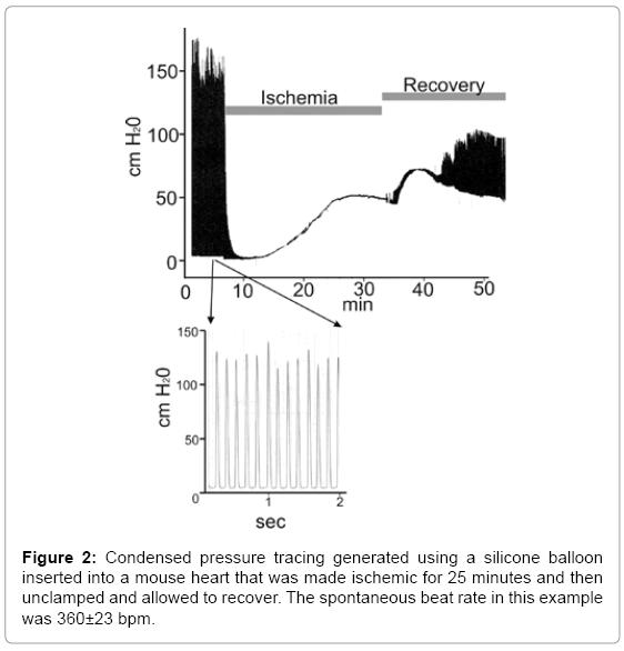 biotechnology-biomaterials-Condensed-pressure