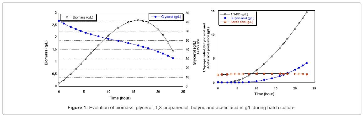 biotechnology-biomaterials-Evolution-biomass