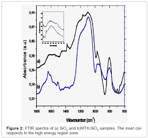biotechnology-biomaterials-FTIR-spectra