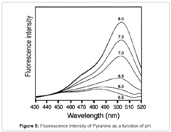 biotechnology-biomaterials-Fluorescence-intensity