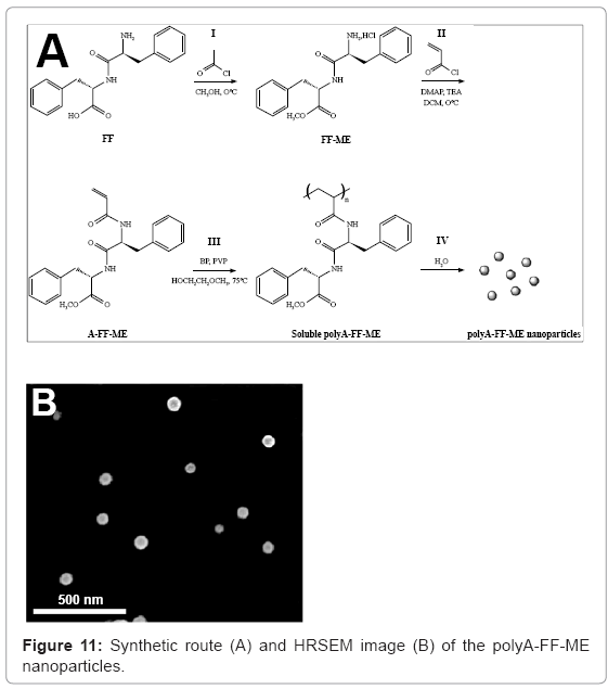 biotechnology-biomaterials-Synthetic-route