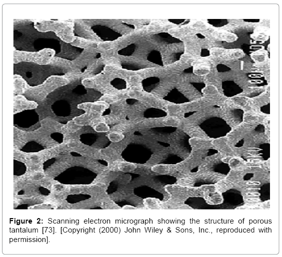 biotechnology-biomaterials-electron-micrograph