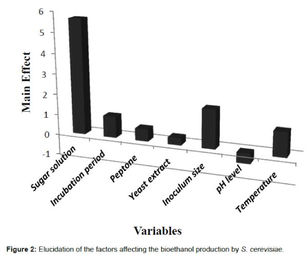 biotechnology-biomaterials-elucidation-factors
