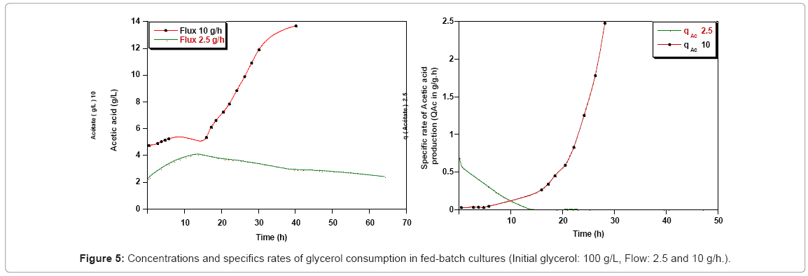biotechnology-biomaterials-glycerol-consumption