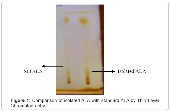 biotechnology-biomaterials-isolated-ALA