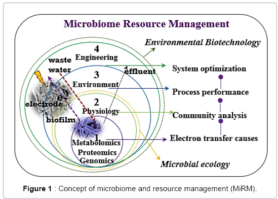 A New Perspective on Microbiome and Resource Management in