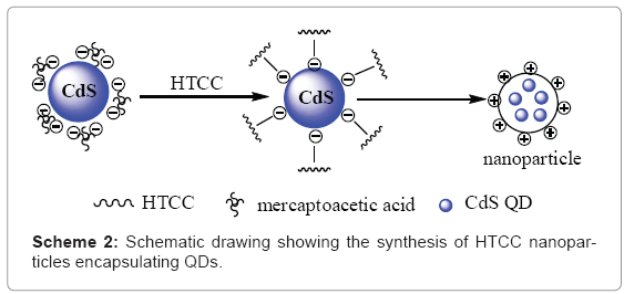 biotechnology-biomaterials-synthesis-HTCC