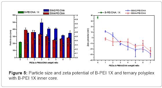 biotechnology-biomaterials-zeta-potential