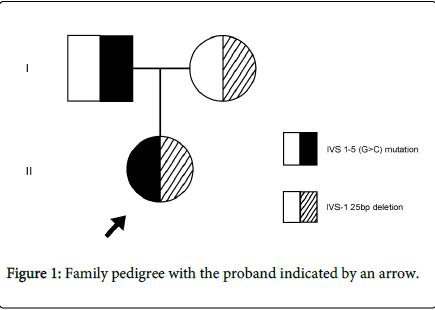 blood-disorders-transfusion-Family-pedigree
