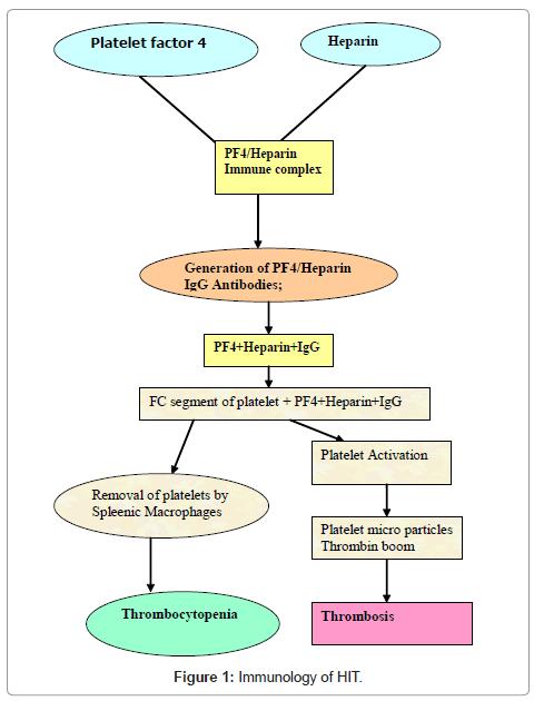 blood-disorders-transfusion-Immunology-HIT