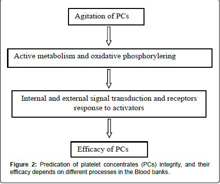 blood-disorders-transfusion-platelet-concentrates