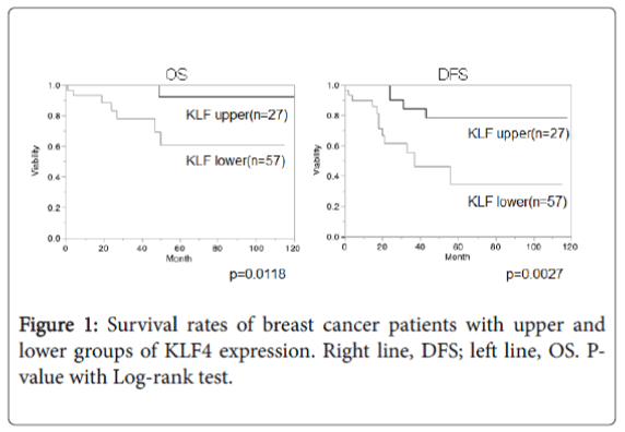 breast-cancer-patients-upper-lower-groups