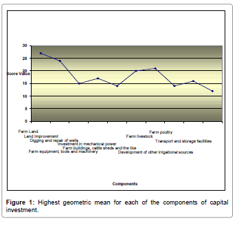 business-and-economics-journal-Actual-Highest-geometric