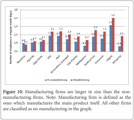 business-economics-Manufacturing-firms