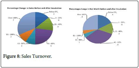 business-economics-Sales-Turnover