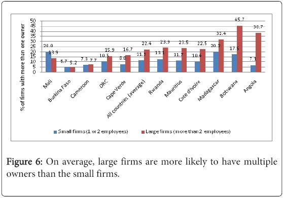 business-economics-multiple-owners