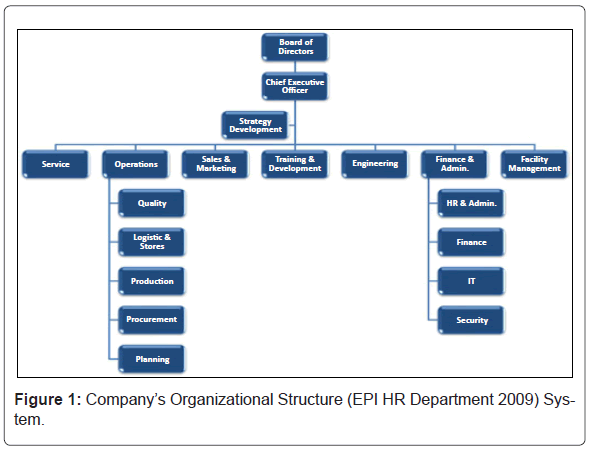 an analysis of the issues of organization structure in a company The aim of this analysis is to identify what structure and control systems the company is using to implement its strategy and to evaluate whether that structure is the appropriate one for the company.