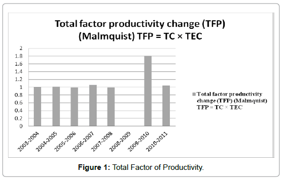 business-financial-affairs-total-factor-productivity