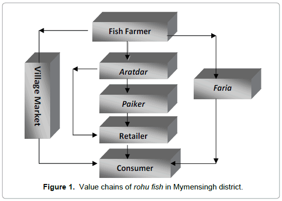 Analysis of Marketing Function, Marketing Efficiency and