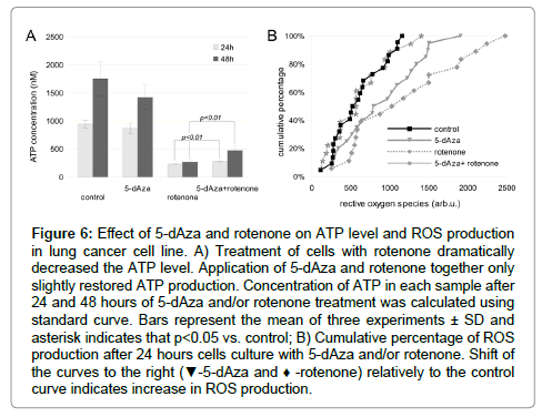 cancer-science-therapy-ATP-level