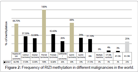 cancer-science-therapy-RIZI-methylation
