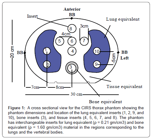 cancer-science-therap-cross-sectional