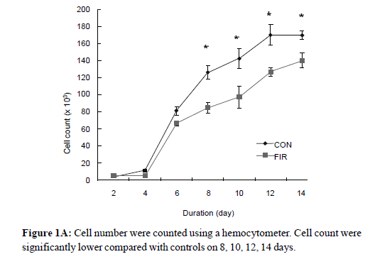cancer-science-therapy-hemocytometer