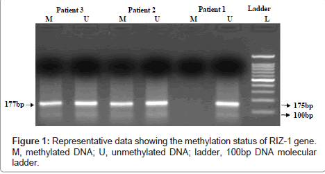 cancer-science-therapy-methylation-status