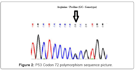 cancer-science-therapy-polymorphism-sequence