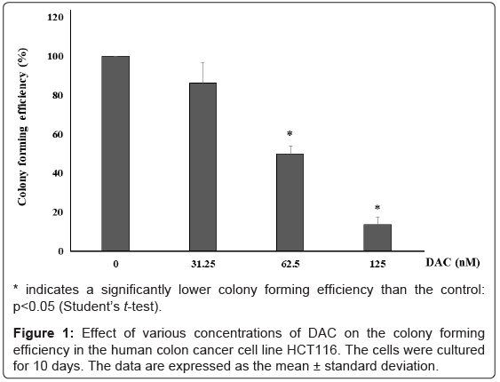 cancer-science-therapy-various-concentrations