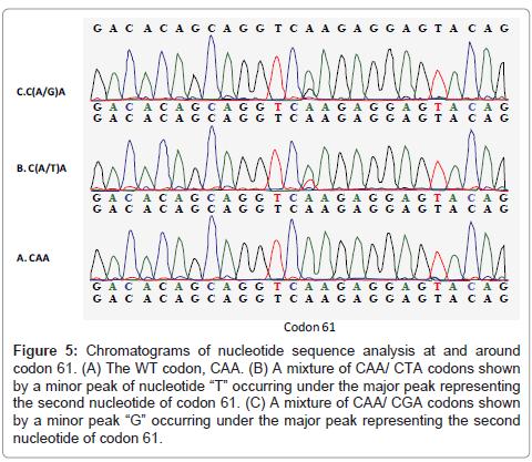 carcinogenesis-mutagenesis-Chromatograms-nucleotide