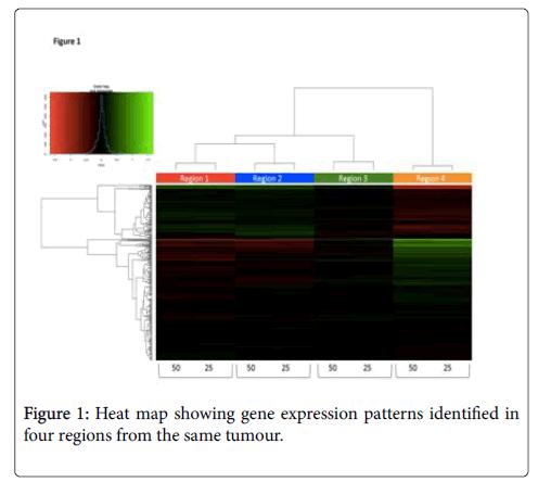 carcinogenesis-mutagenesis-Heat-map
