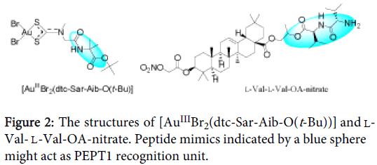 carcinogenesis-mutagenesis-Peptide-mimics