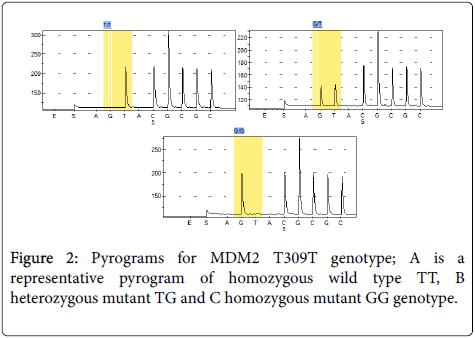 carcinogenesis-mutagenesis-Pyrograms-MDM2-T309T-genotype