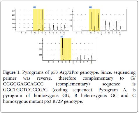 carcinogenesis-mutagenesis-Pyrograms-p53-Arg72Pro