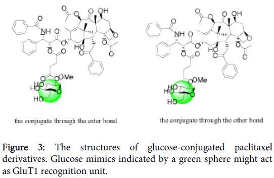 carcinogenesis-mutagenesis-glucose-conjugated