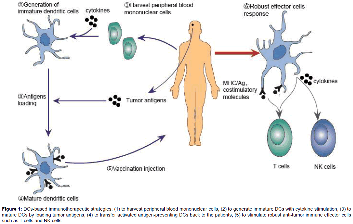 A Systemic Review of Clinical Trials on Dendritic-Cells Based