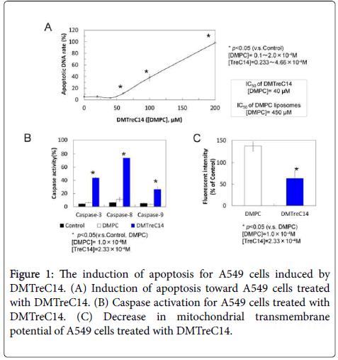 carcinogenesis-mutagenesis-mitochondrial-cells