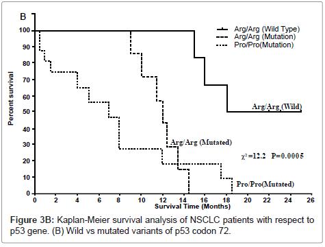 carcinogenesis-mutagenesis-mutated-variants