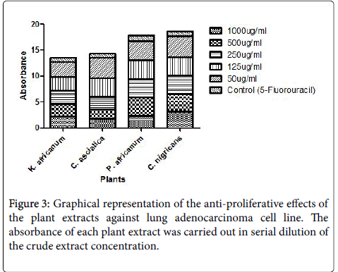 carcinogenesis-mutagenesis-proliferative