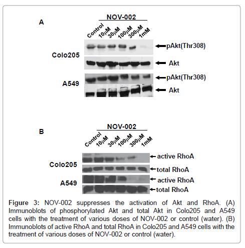carcinogenesis-mutagenesis-suppresses-activation