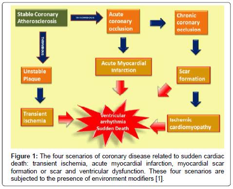 cardiovascular-pharmacology-four-scenarios-coronary-disease